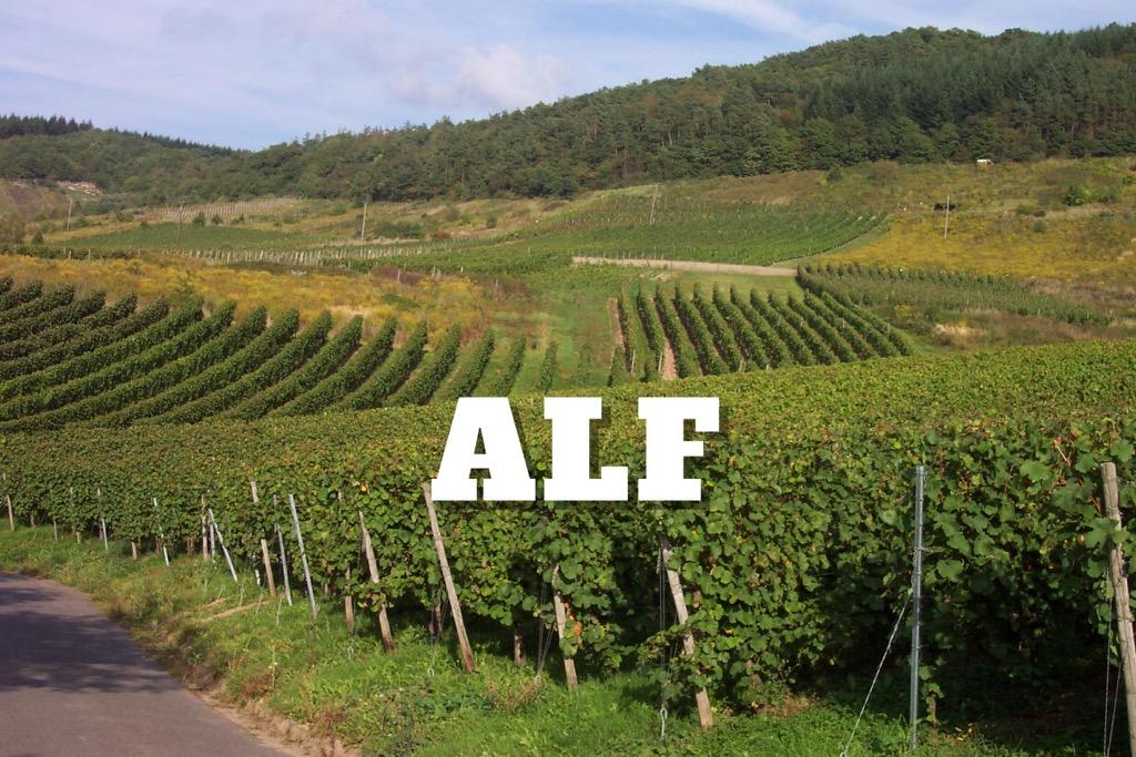 Alf, regio 1