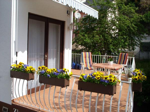 Balkon met Moezelzicht Ediger-Eller