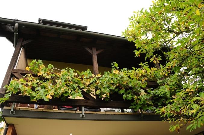 balkon woning 2 inge barden