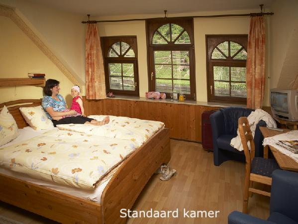 Standaard kamer in Weinhaus Lenz in Briedern