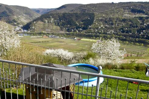 Uitzicht op de wijnbergen en de Moezel