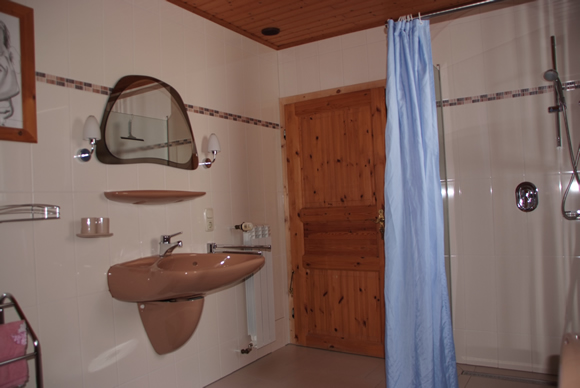 Ruime badkamer met douche in vakantiewoning