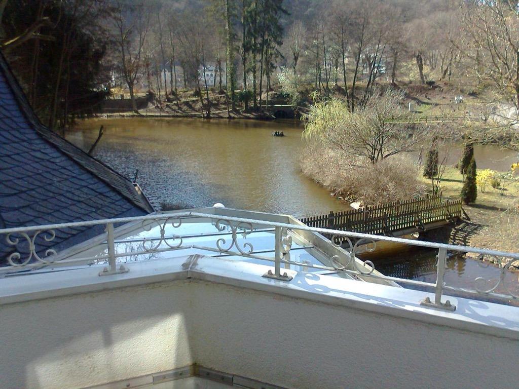 Vijver hotel Schwanenweiher