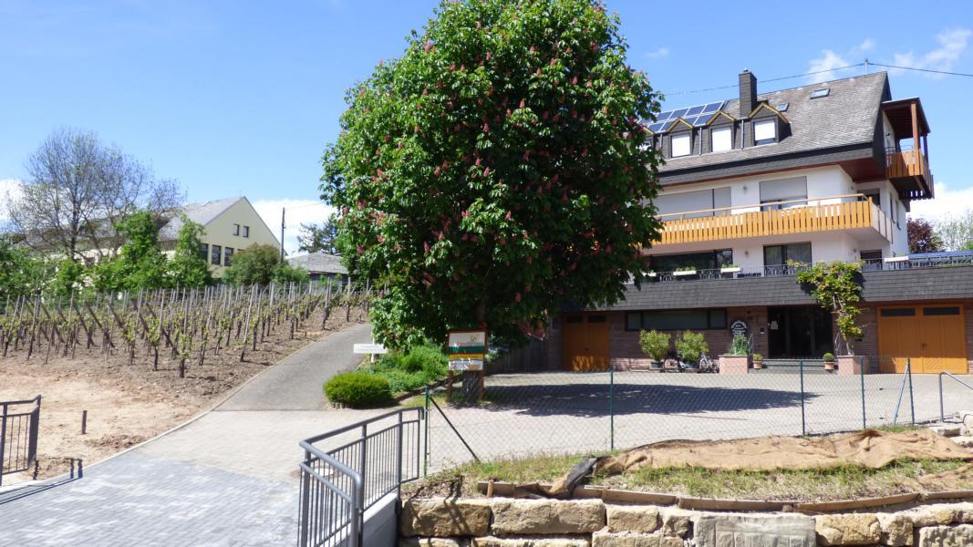 Gastehaus Thomas in Leiwen
